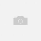 D) Oceanático Solidário