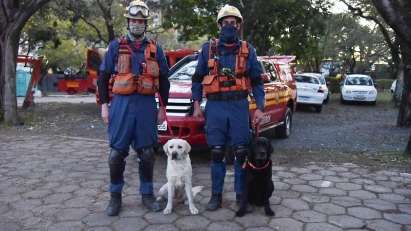Equipe de cães de Santa Catarina chega em POA para atuar na busca pelos bombeiros desaparecidos no incêndio da SSP